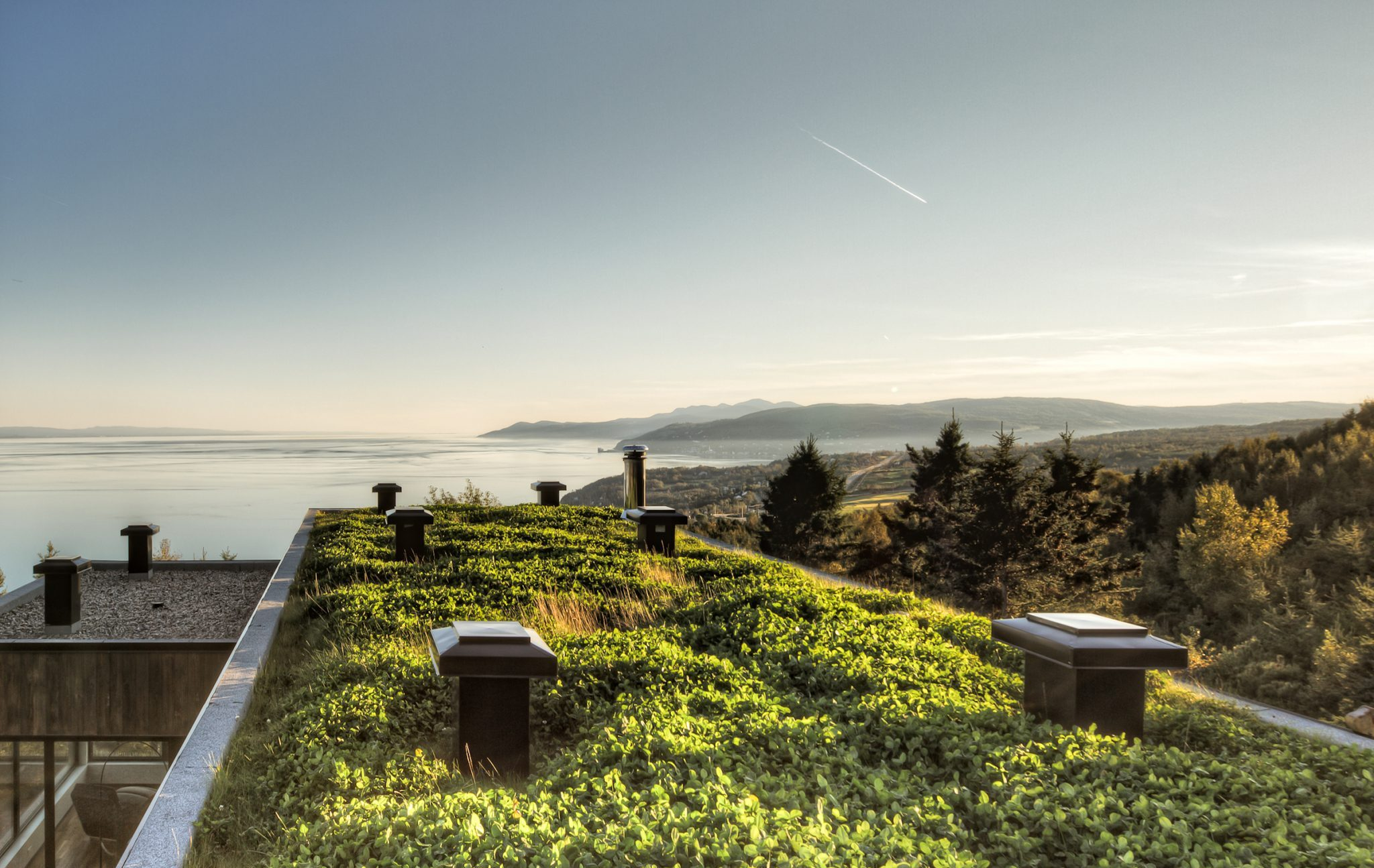 Green Roofs: A Solution that benefits everyone